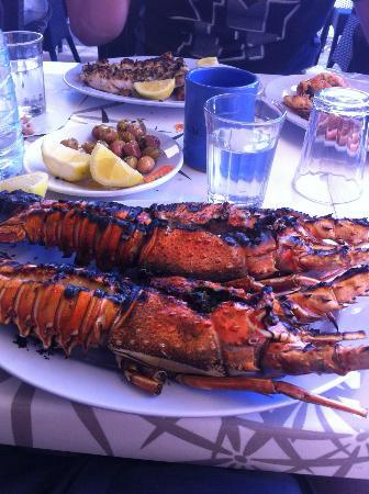 photos of grilled lobsters on plate for Argan Sports customers